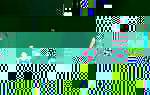 rainbow_team.jpg